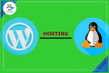 Phân biệt hosting linux và wordpress